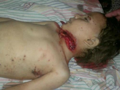 More than 100 Syrian were sluaghtered by the official Syrian army of Bashar al Asad